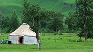 Image for Central Asia Workshop