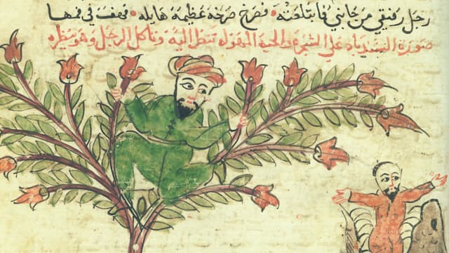 An Introduction to Islamic Manuscript Culture