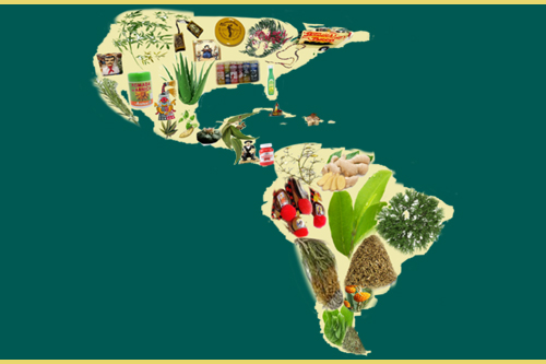 From Botánicas to Obamacare: Health and Healing Traditions in Latin America