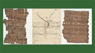 Image for Multilingualism in Early Islamic Egypt: The View from Papyri