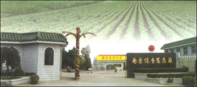 Wednesday Lunch Talk -- The Relationship between the State and Farmers in Contemporary China