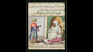 Image for Friends of the Emir: Discussing a New Faculty Publication