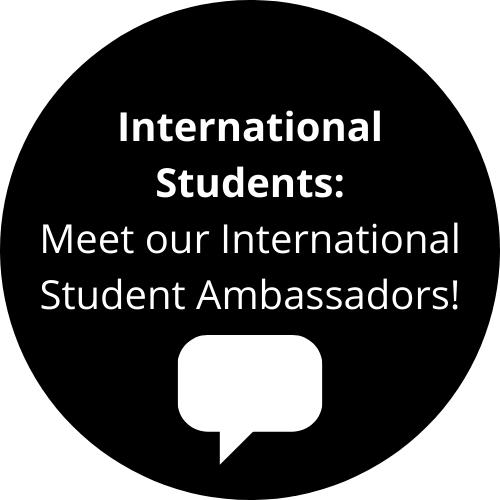 international student ambassador icon