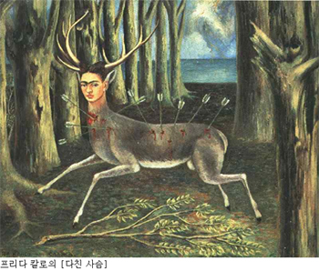 현대시의 여성과 생태 문제 (The Issue of Women and Ecology in Modern Poetry)
