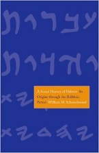 Image for A Social History of Hebrew: From Its Origins Through the Rabbinic Period