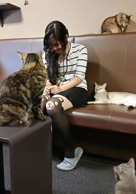"Stefanie visiting a ""cat cafe,"" surrounded by her new furry friends."