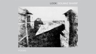 Image for A Book Talk with Solmaz Sharif