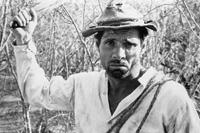 Cinema According to Nelson Pereira dos Santos: Vidas Secas & Boca de Ouro