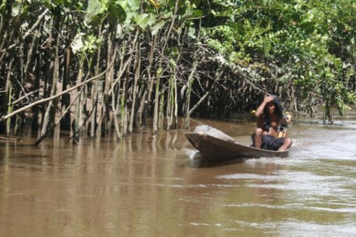 Conservation consternation: Prof studies Amazon