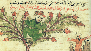 Photo for An Introduction to Islamic Manuscript
